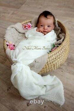 Lindea Sole reborned by Nikol Maris reborn doll