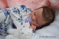 Pbn Yvonne Etheridge Baby Girl Doll Realborn Ana By Bountiful Baby 0118