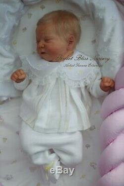 Pbn Yvonne Etheridge Reborn Baby Doll Girl Sculpt Chase By Bonnie Brown 0220