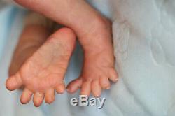 Reborn Baby Boy Doll 14 Premature Last One Artist Marie Sunbeambabies