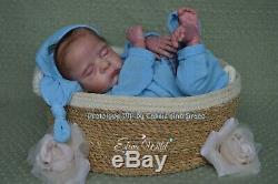 Reborn Baby Preemie Prototype PIP by Cassie Ann Brace, IIORA