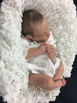 Stunning Newborn Reborn Baby Girl Fake Baby Painted Hair Xander By Cassie Brace